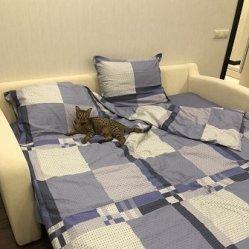 ко сну готова!