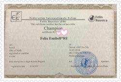 Champion Felix Emibell*RU