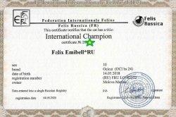 IC Felix Emibell